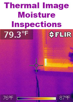 Click Here for Water Damage Moisture Inspections