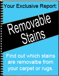 Click Here to get your FREE stain report